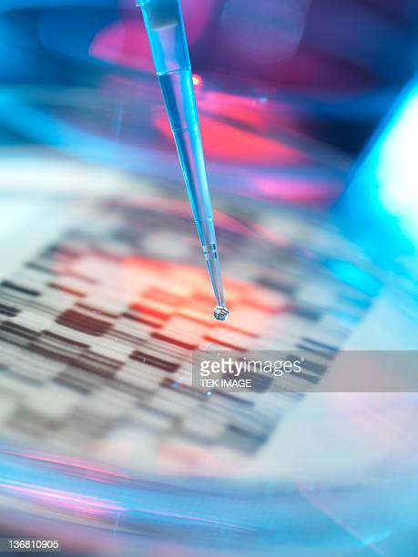 Genetic research, conceptual image