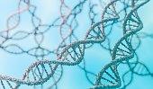 Genetics concept. 3D rendered illustration of DNA molecules.