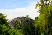 Geodesic dome made of glass amongst some trees