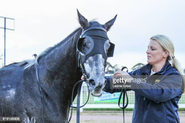 Geodude after winning the Gippsland Funeral Services Class 1 Handicap at Sale Racecourse on July 20 2017 in Sale Australia