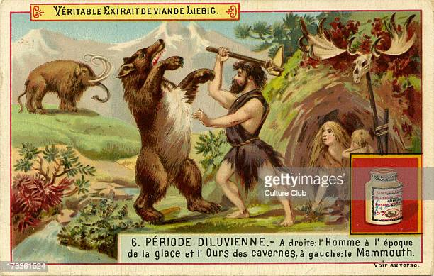 Geological Periods Published 1892 Diluvian period Translation 'Right man during the Ice Age and Cave Bear left mammoth' Liebig Company collectible...