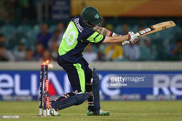 George Dockrell of Ireland is bowled by Morne Morkel of South Africa during the 2015 ICC Cricket World Cup match between South Africa and Ireland at...