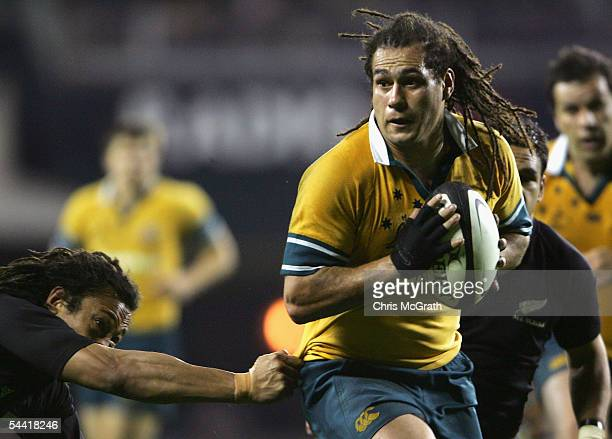 George Smith of the Wallabies in action during the Tri Nations series Bledisloe Cup match between the New Zealand All Blacks and the Australian...