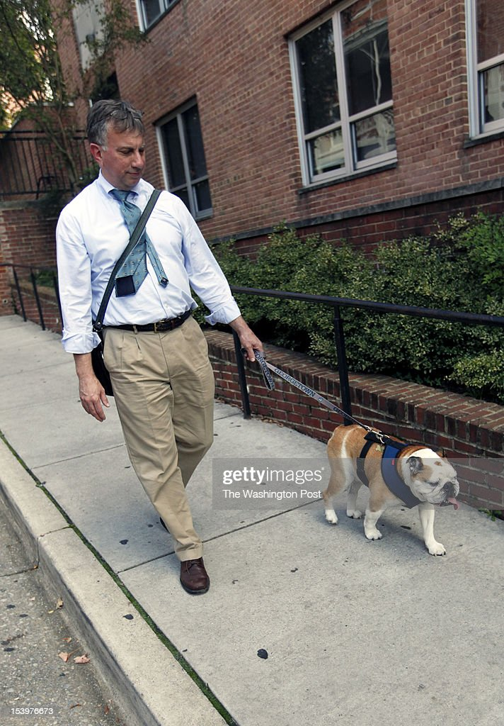 Georgetown University is introducing their new mascot, English bulldog Jack Jr., at Midnight Madness Friday night. Here, Rev. Christopher Steck walks Jack, the original mascot, back to the apartment they share with Jack Jr. in the freshman dorm on October 10, 2012.