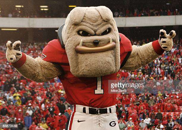 Georgia Bulldogs mascot Hairy Dawg poses before the game against the Georgia Tech Yellow Jackets at Sanford Stadium on November 29 2008 in Athens...