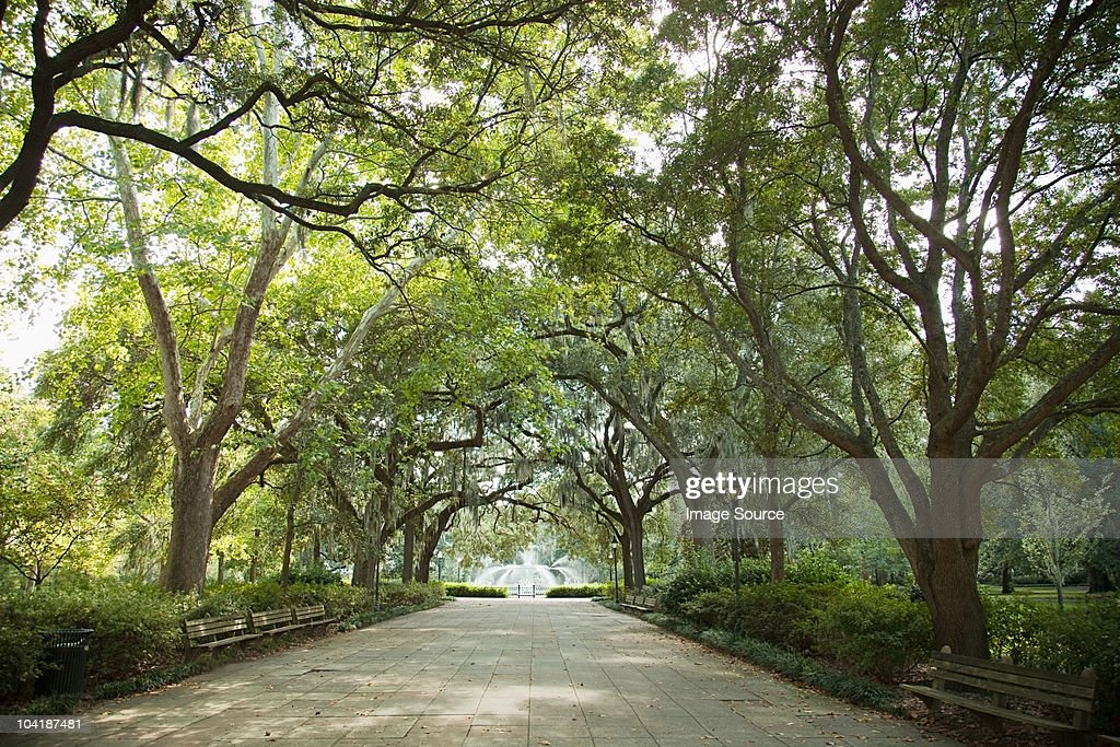 USA, georgia, savannah, forsyth park