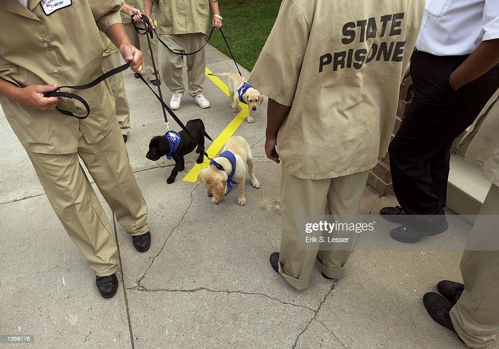 Georgia Inmate Finder - SearchQuarry.com