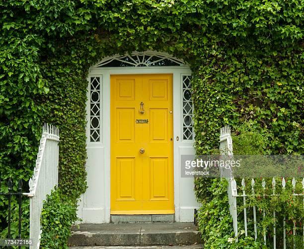 Georgian Irish Front Door with ivy surrounding it.