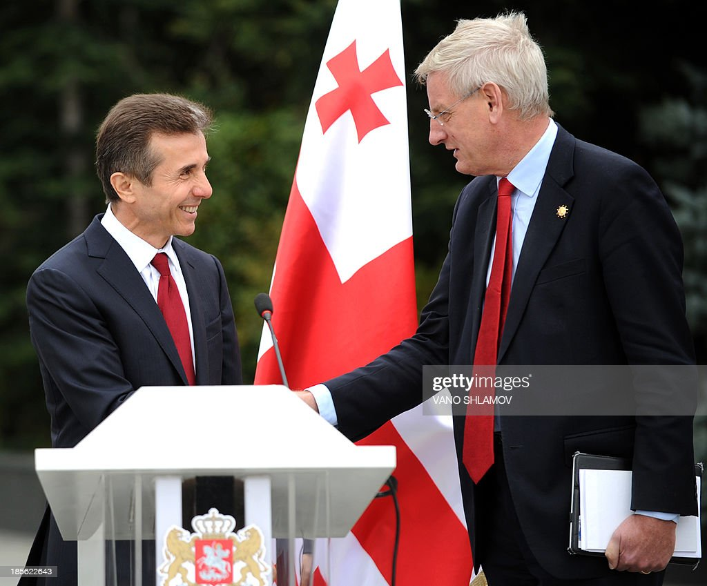 Georgian Prime Minister Bidzina Ivanishvili (L) shakes hands with visiting Swedish Foreign Minister Carl Bildt (R) as they meet in the Georgia's capital Tbilisi, on October 23, 2013, on the eve of the presidential vote. The presidential elections in Georgia are scheduled on October 27. AFP PHOTO /VANO SHLAMOV