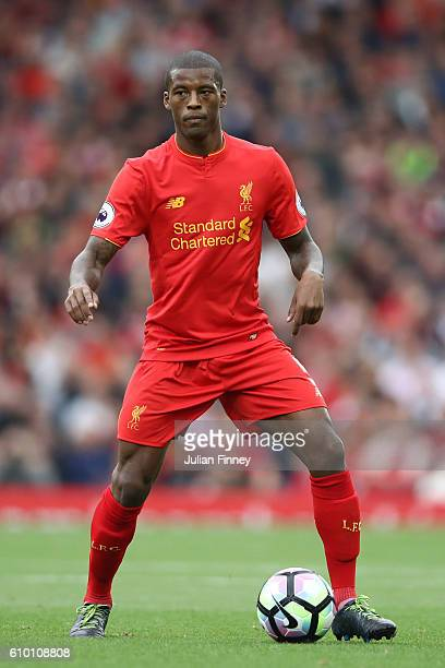 Georginio Wijnaldum of Liverpool in action during the Premier League match between Liverpool and Hull City at Anfield on September 24 2016 in...
