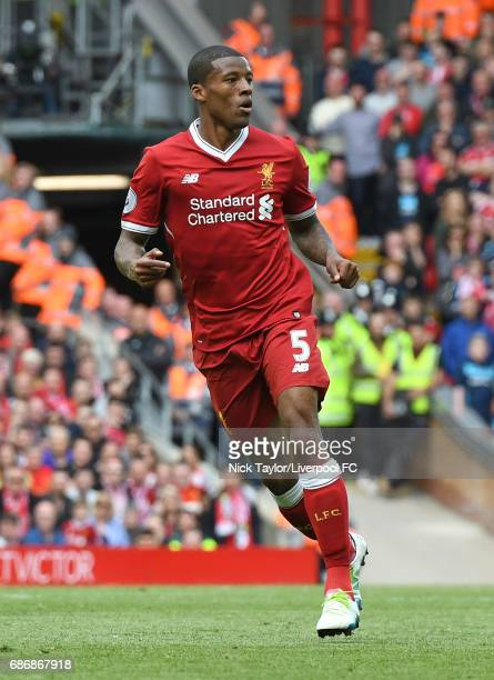 Georginio Wijnaldum of Liverpool in action during the Premier League match between Liverpool and Middlesbrough at Anfield on May 21 2017 in Liverpool...