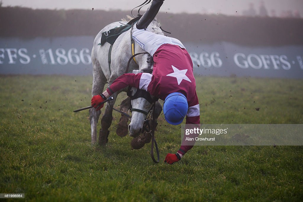 Ger Fox falls from Ipos Du Berlais at Gowran Park racecourse on January 22, 2015 in Kilkenny, Ireland.