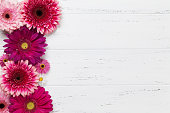 Gerbera flowers on wooden table. Top view with space for your text