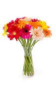Gerberas bunch in a vase