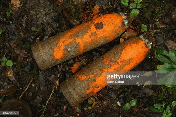 German 105mm artillery shells dating from World War I that were never fired and marked with orange paint by a forest services worker lie in Bois...