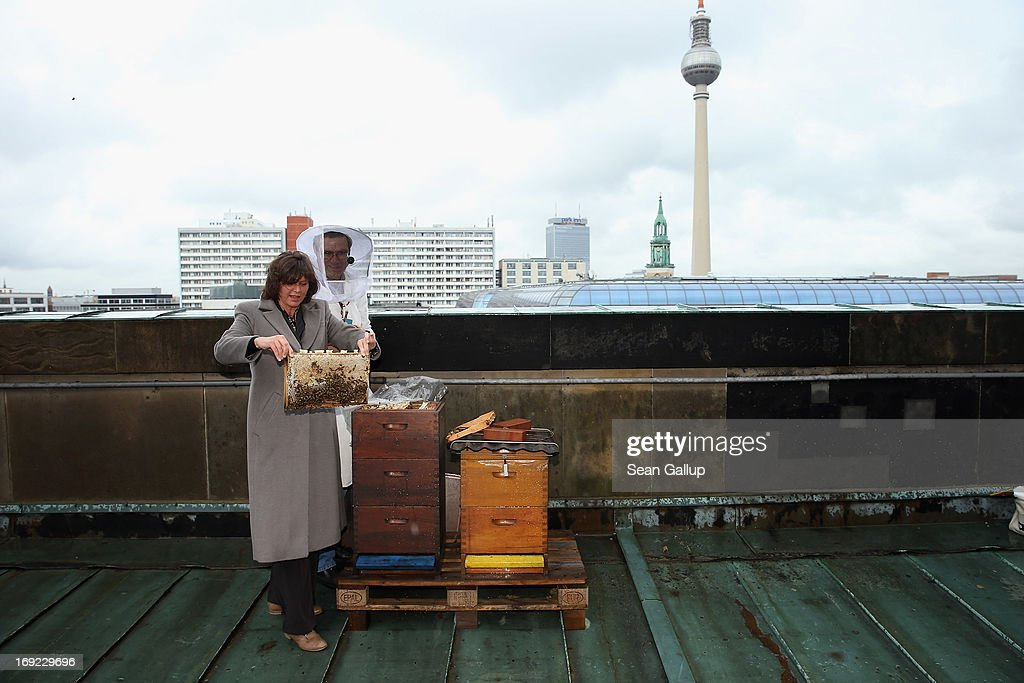 Aigner Visits Bee Colony On Dom Cathedral Roof