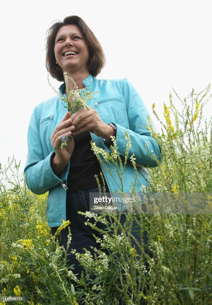 German Agriculture and Consumer Protection Minister <a gi-track='captionPersonalityLinkClicked' href=/galleries/search?phrase=Ilse+Aigner&family=editorial&specificpeople=2158567 ng-click='$event.stopPropagation()'>Ilse Aigner</a> walks among flowering wild clover (in German: Klee) growing at a test field operated by the Saaten Zeller company on July 3, 2012 in Phoeben, Germany. The German government is funding various projects to test alternatives to corn for the production of bioenergy, in this case producing methane to produce electricity. According to Saaten Zeller one hectar of wild plants can produce enough energy for a household of four for a year.