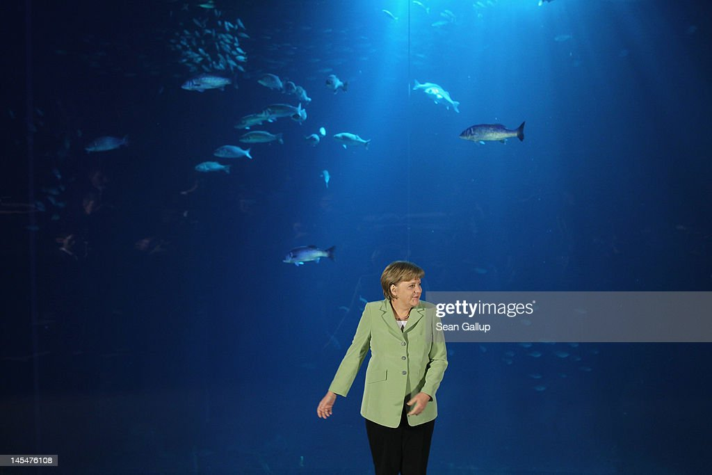 German Chancellor <a gi-track='captionPersonalityLinkClicked' href=/galleries/search?phrase=Angela+Merkel&family=editorial&specificpeople=202161 ng-click='$event.stopPropagation()'>Angela Merkel</a> arrives for the group photo of leaders at the 2012 Council of Baltic Sea States Summit in front of an aquarium of Baltic Sea sealife at the Ozeaneum maritime museum on May 30, 2012 in Stralsund, Germany. Leaders of the eleven member states as well as representatives of the European Union are meeting to discuss matters related to energy, the environment and economic development during the two-day summit.