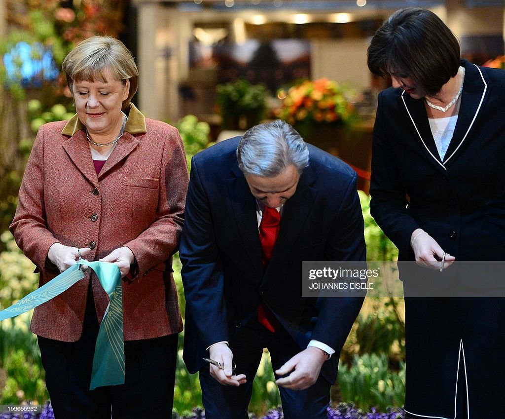 German Chancellor Angela Merkel, Berlin Mayor Klaus Wowereit (2ndR) cut a ribbon as German Agriculture Minister Ilse Aigner (R) looks on January 18, 2013 during the opening of the Green Week Agricultural Fair in Berlin.