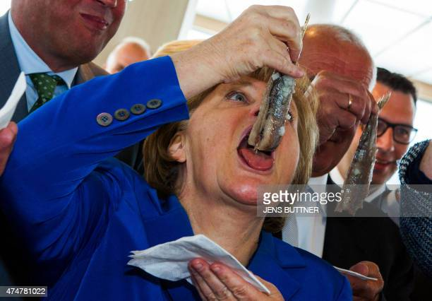 German chancellor Angela Merkel eats a pickled herring after the name giving ceremony for the fish trawler ROS 777 «Mark» of the Warnemuender fishery...