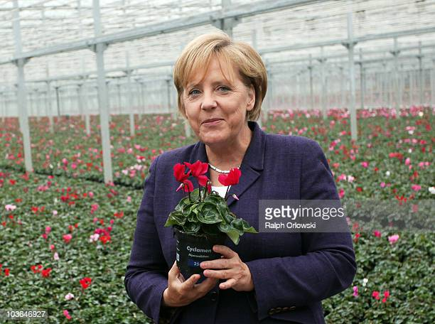 German Chancellor Angela Merkel holds flowers during the visit of a market garden during her familiarization trip on August 26 2010 in Emsbueren...