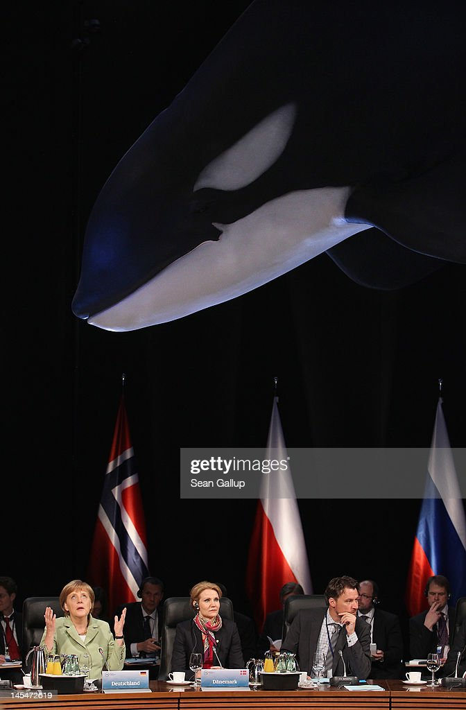 German Chancellor Angela Merkel looks up as she speaks under a model of a whale hanging from the ceiling at the opening of the 2012 Council of Baltic...