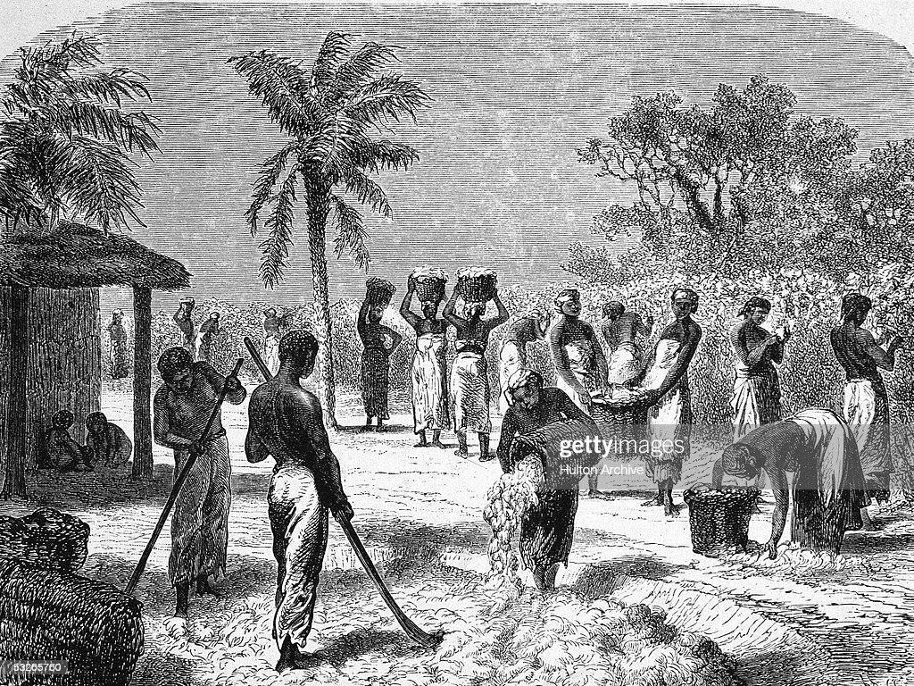 Slavery - The Peculiar Institution | Getty Images