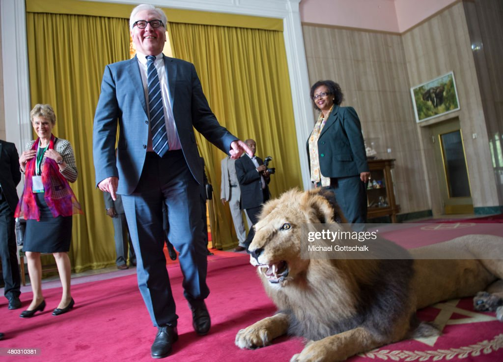 German Foreign Minister <a gi-track='captionPersonalityLinkClicked' href=/galleries/search?phrase=Frank-Walter+Steinmeier&family=editorial&specificpeople=603500 ng-click='$event.stopPropagation()'>Frank-Walter Steinmeier</a> passes by a stuffed Lion after his meeting with Mulatu Teshome, President of Ethiopia, (not pictured) on March 24, 2014 in Addis Abeba, Ehiopia. Steinmeier visits Ethiopia, Tanzania and Angola during his trip to Africa.