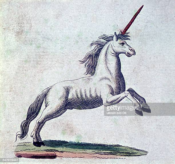 German literature The unicorn engraving from the 'Picture Book for Children' by F J Bertuch Gotha 1790