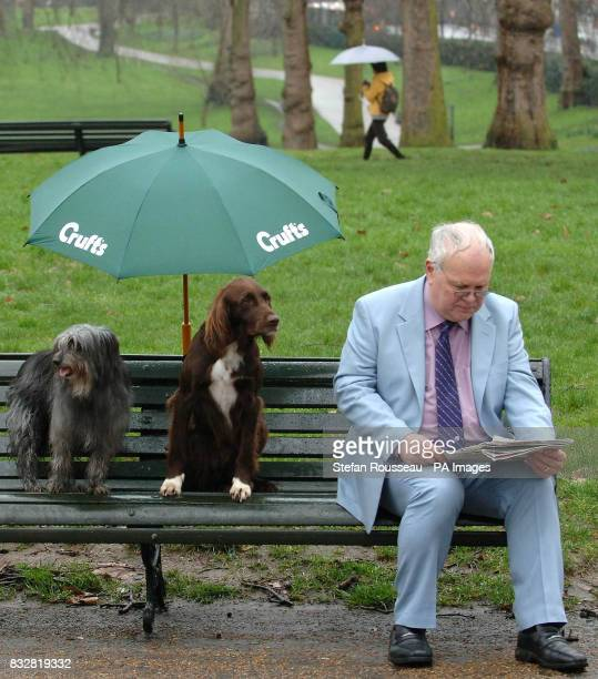 A German Long Haired Pointer and a Pyrenean sheepdog shelter from the rain while a commuter read's his newspaper in London's Green Park today during...