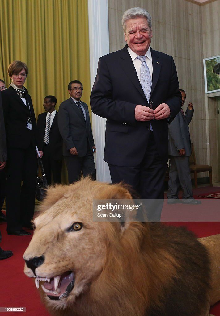 German President <a gi-track='captionPersonalityLinkClicked' href=/galleries/search?phrase=Joachim+Gauck&family=editorial&specificpeople=2077888 ng-click='$event.stopPropagation()'>Joachim Gauck</a> smiles before touching a stuffed lion after meeting with Ethiopian Prime Minister Hailemariam Desalegn at the Presidential Palace on March 17, 2013 in Addis Ababa, Ethiopia. President Gauck and his partner, First Lady Daniela Schadt, are in Ethiopia for a four-day state visit.