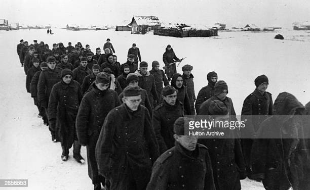 German prisoners of war NorthWest of Stalingrad