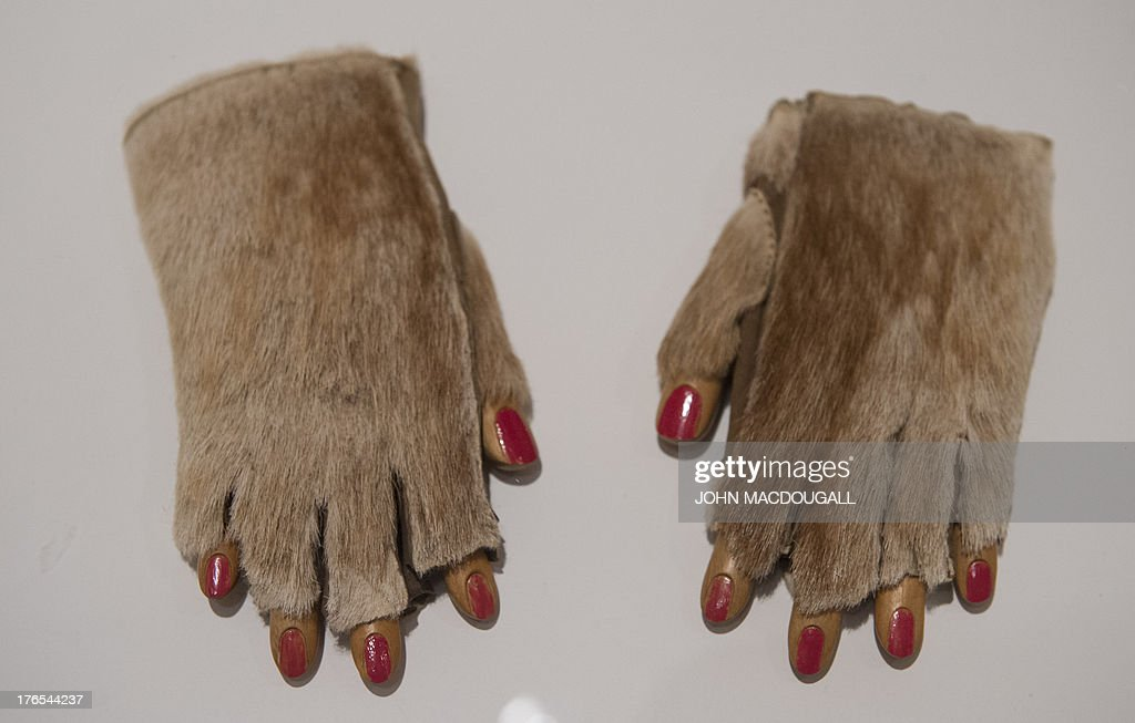 German-born Swiss artist Meret Oppenheim's 'Fur Gloves - 1936' is on display at the Meret Oppenheim Retrospective in Berlin on August 15, 2013. The retrospective at the Martin-Gropius-Bau marks the centenary of the surrealist artist's birth in Berlin on 6 October 1913, and opens from 16 August to 1 December 2013.