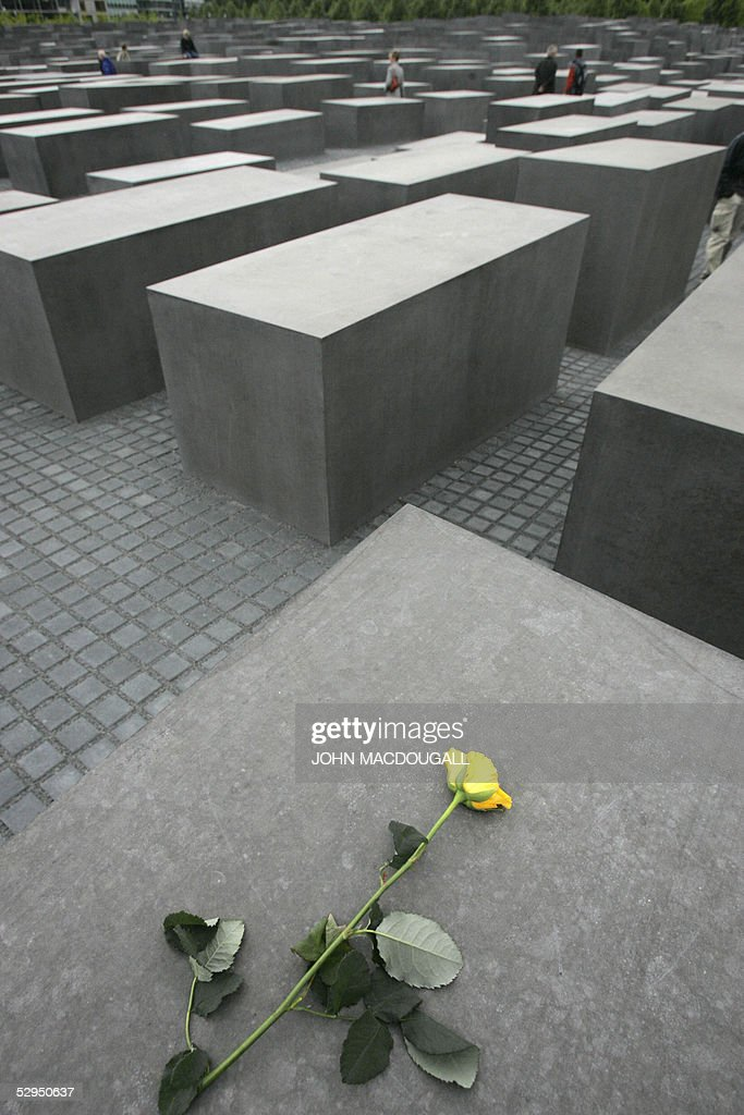A yellow rose lies on one of the 2711 concrete slabs making up the recently opened Memorial for the Murdered Jews of Europe in Berlin 18 May 2005 The...