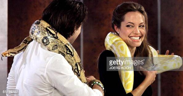 Actress Angelina Jolie of the US and actor Colin Farrell of Ireland laugh as they both have a Boa Constrictor snake crawling over their shoulders 13...