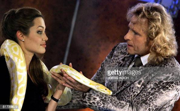 Actress Angelina Jolie of the US has a Boa Constrictor snake crawling over her shoulders as German showmaster Thomas Gottschalk looks on 13 November...