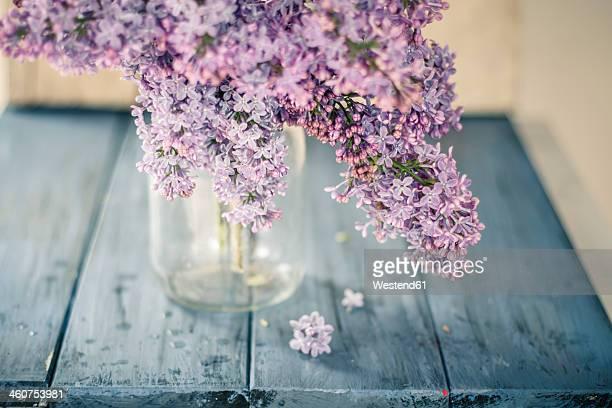 Germany, Baden Wuerttemberg, Lilac flower in vase on blue wooden board