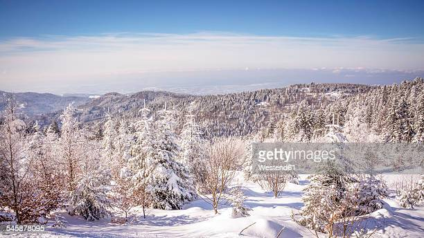 Germany, Baden-Wuerttemberg, winter landscape at Black forest