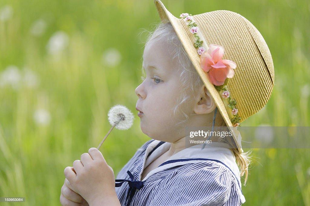 Germany, Bavaria, Girl holding dandelion seed : Stock Photo