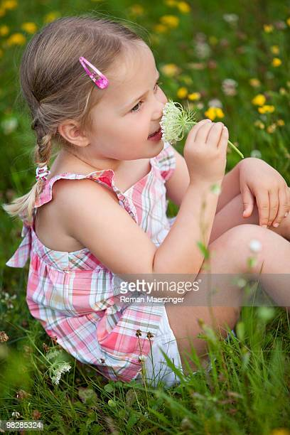 Germany, Bavaria, Girl (4-5) sitting in meadow smelling flower