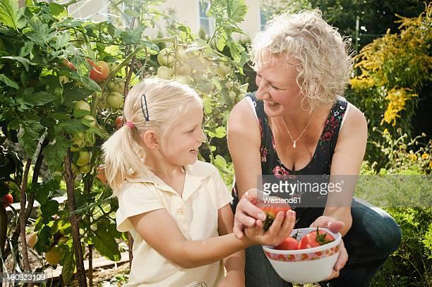 Germany, Bavaria, Grandmother and granddaughter working in vegetable garden