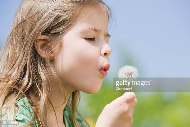Germany, Bavaria, Munich, Girl (6-7) blowing dandelion seeds, eyes closed, side view