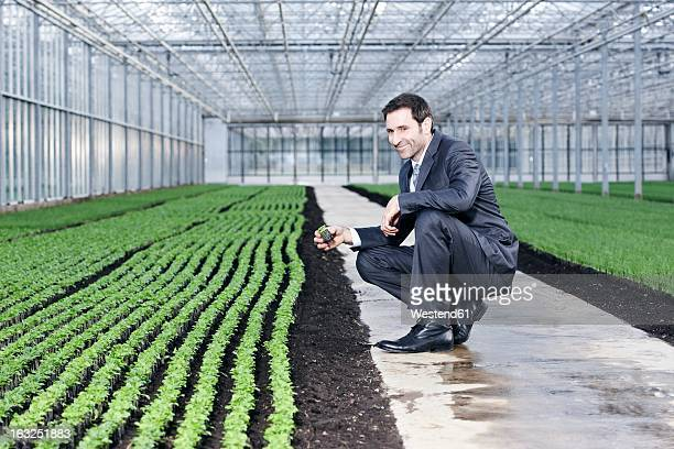 Germany, Bavaria, Munich, Mature man examining seedlings in greenhouse