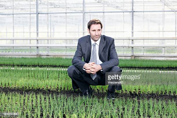 Germany, Bavaria, Munich, Mature man in greenhouse between seedlings