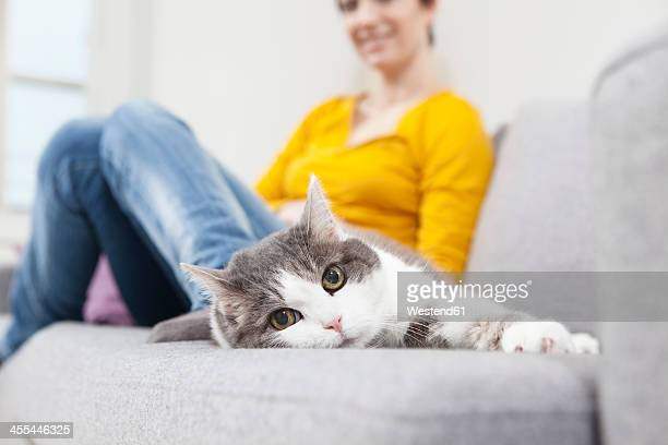 Germany, Bavaria, Munich, Mid adult woman with cat on couch