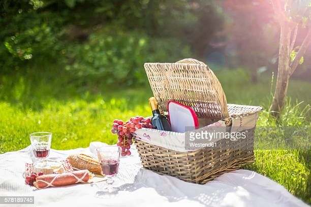 Germany, Bavaria, Picnic on grass with wine, grapes, sausage, cheese and braed