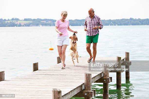 Germany, Bavaria, Starnberger See, Couple playing with golden retriever on jetty