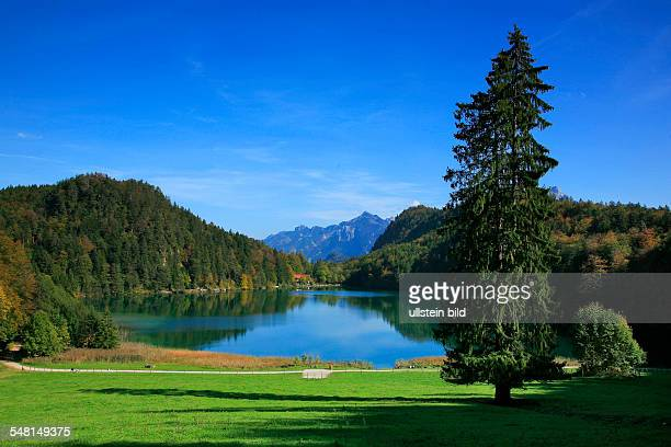 Germany Bavaria The lake 'Alatsee' near Fuessen in autumn