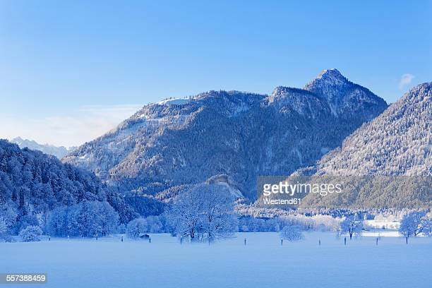 Germany, Bavaria, Upper Bavaria, Chiemgau, Chiemgau Alps, View to Mountain Rudersburg in the morning