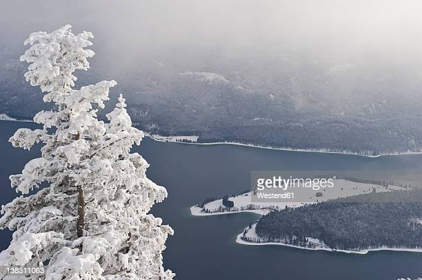 Germany, Bavaria, View of walchensee lake with Herzogstand mountain forest